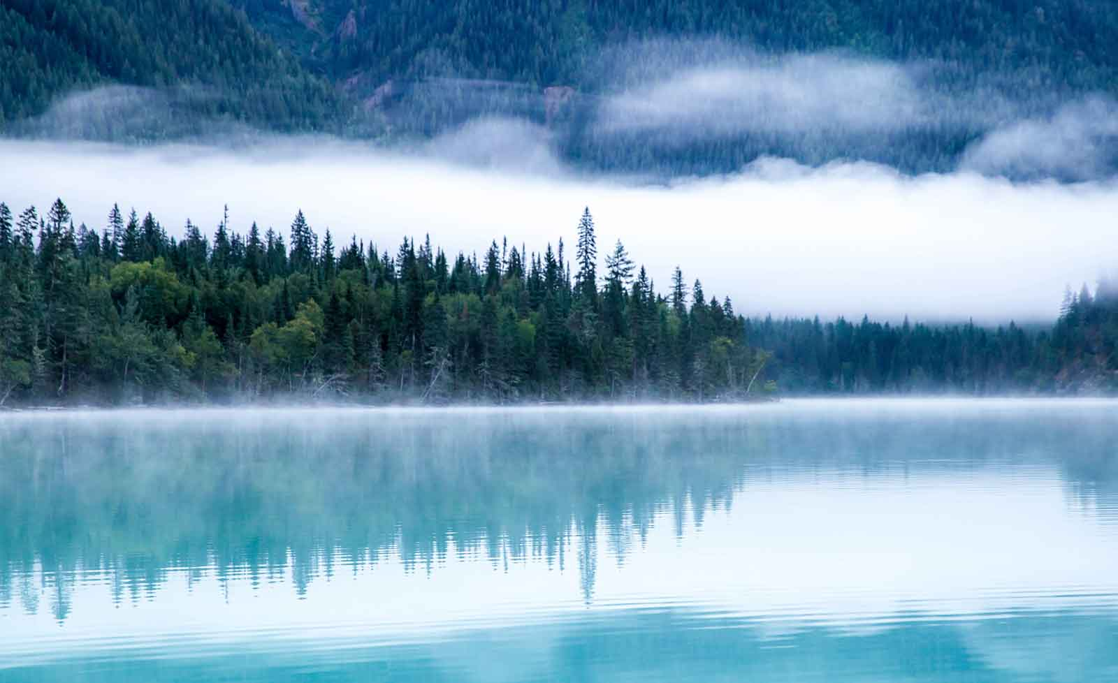 WALL MURAL PHOTO WALLPAPER XXL Lake Crystal Clear Water Forest Woods (JD-1067WS)