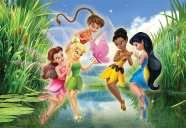 Disney Fairies (321)