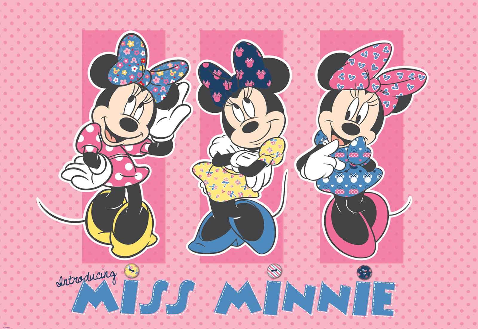 Disney Minnie Mouse (1677)