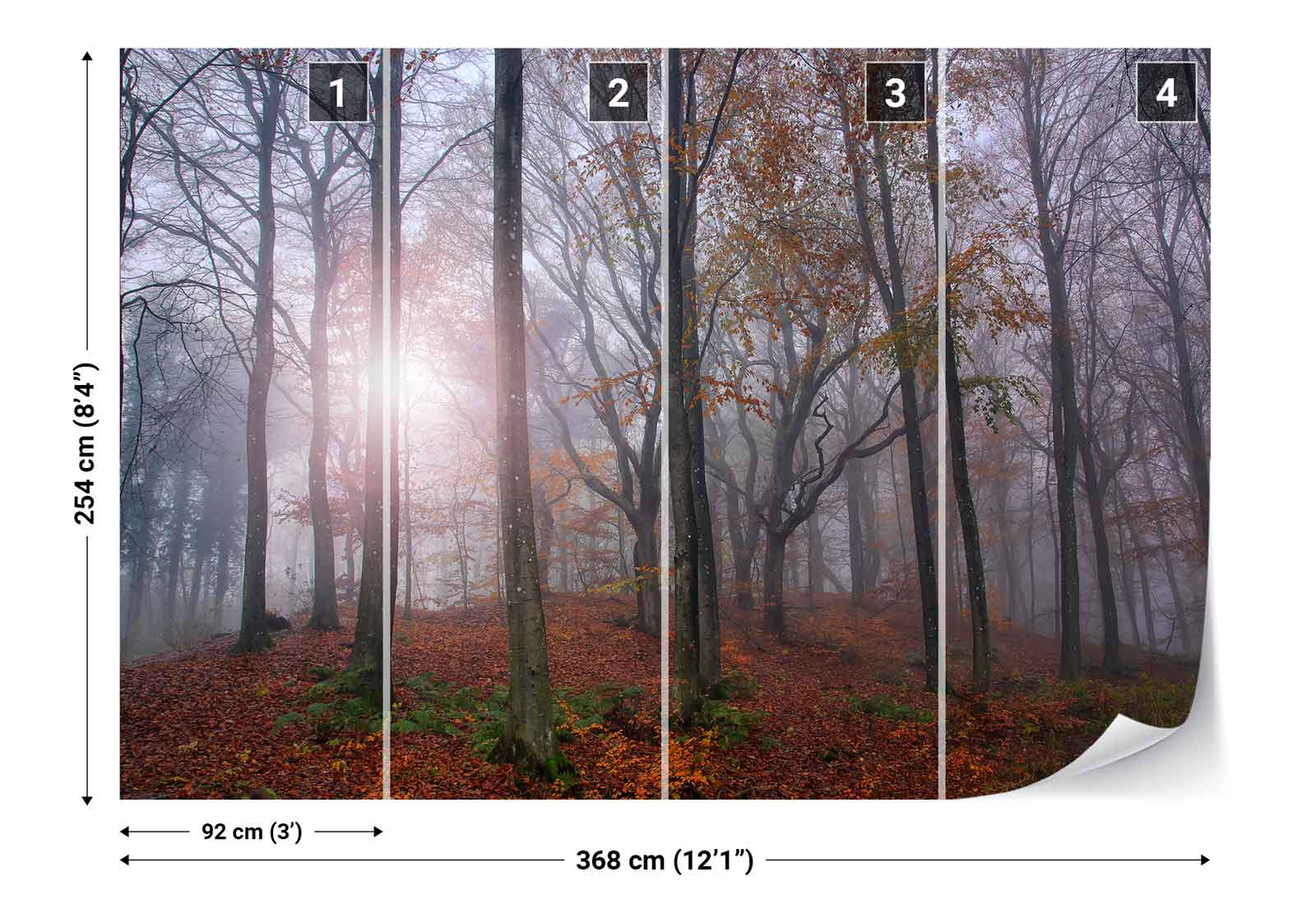 Forest trees undergrowth autumn leaves photo wallpaper for Autumn forest wallpaper mural