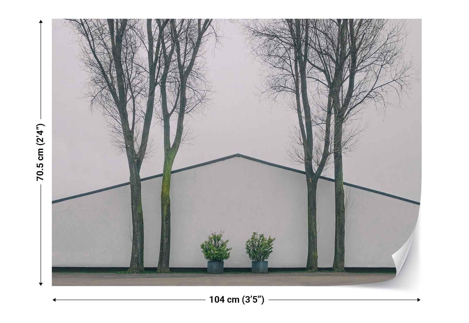 Dual-Plants-Trees-Wall-Photo-Wallpaper-Wall-Mural-1X-1265400