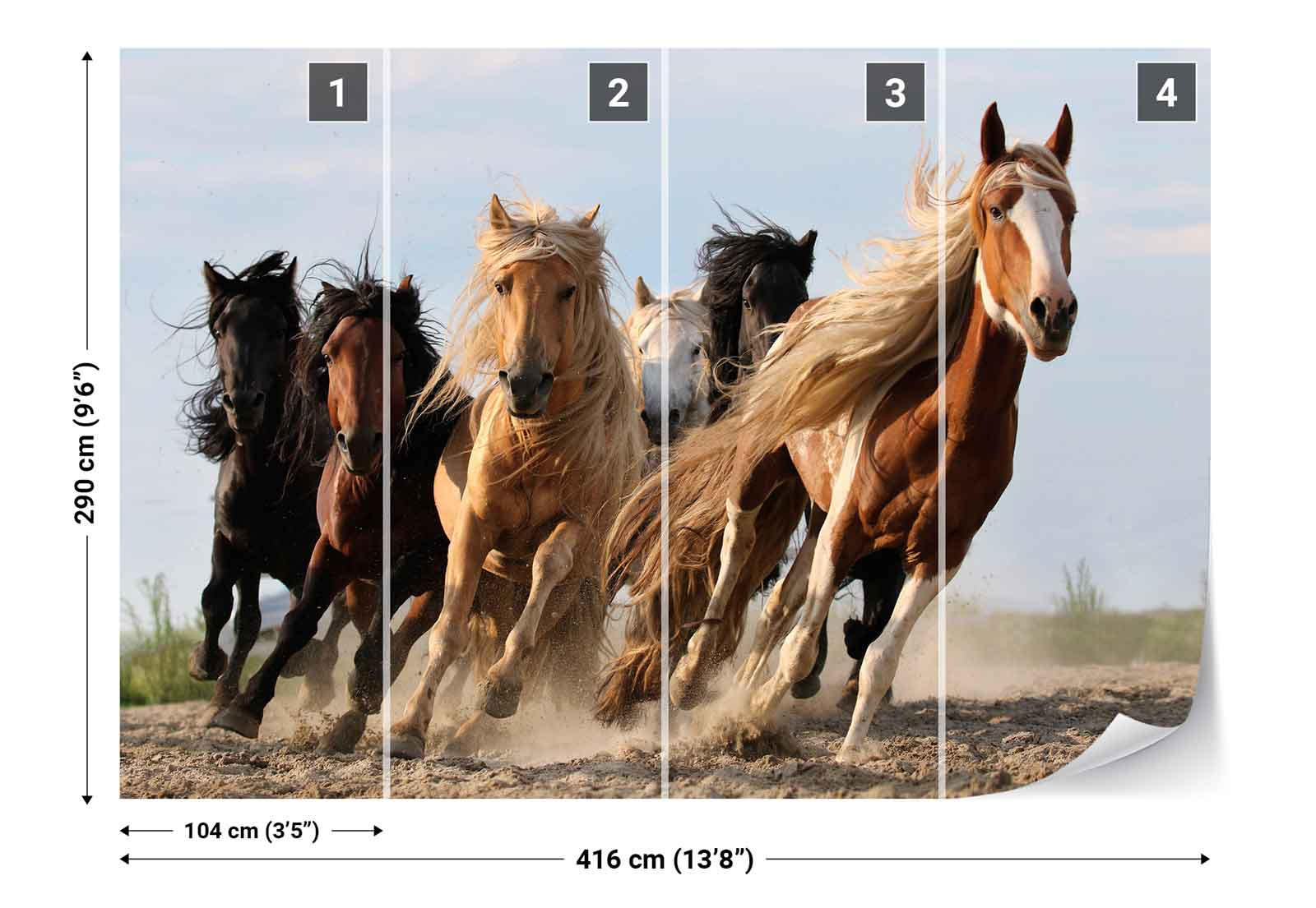 Horse herd galloping photo wallpaper wall mural 1x for Equestrian wall mural