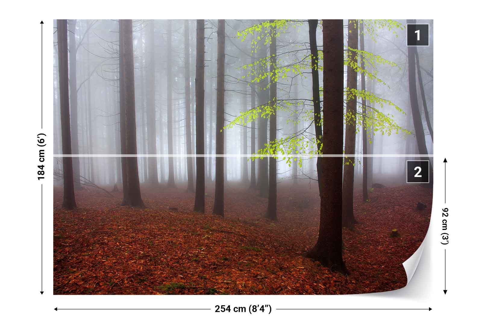 wald b ume herbst bl tter abdeckung nebel vlies fototapete 1x 134286 tapete ebay. Black Bedroom Furniture Sets. Home Design Ideas