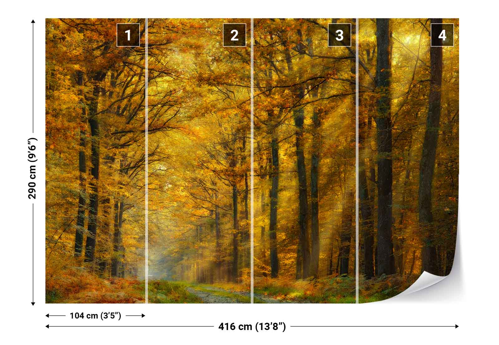 Autumn forest trees lane sunlight photo wallpaper wall for Autumn forest 216 wall mural