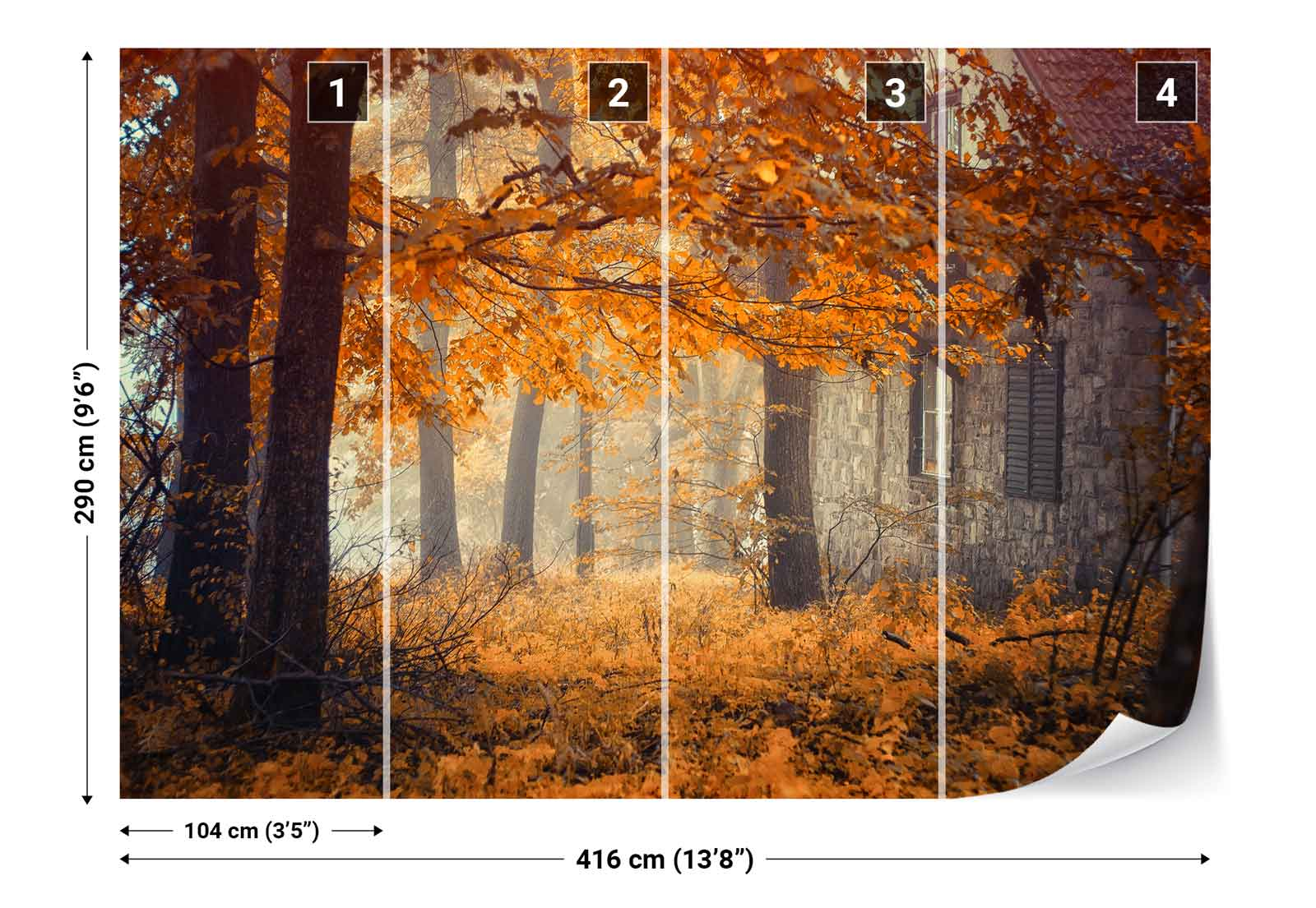 Autumn woods trees photo wallpaper wall mural 1x 712574 for Autumn tree mural
