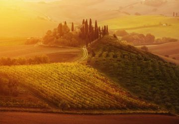 Tuscan Dream