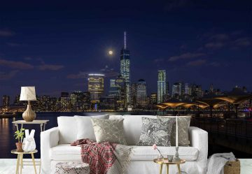 Moonlight Over Lower Manhattan