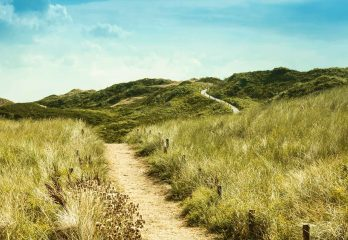 The Path To Summer