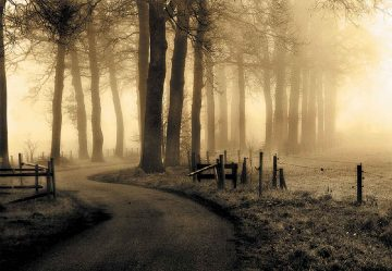 Road To Nowhere...