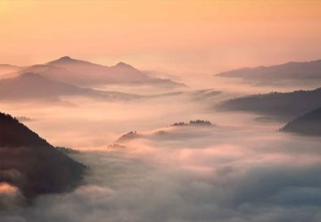 Foggy Morning In The Mountains