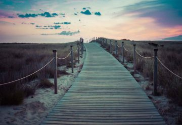 The Path To The A New Day