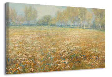 Meadow In Bloom, Egber Schaap.
