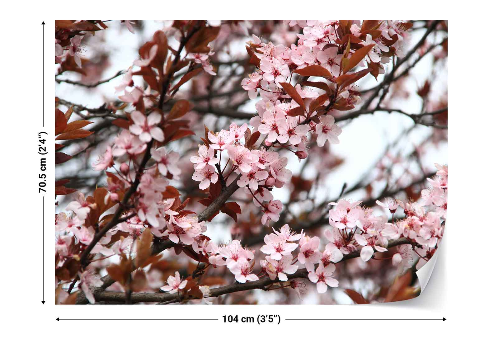 Cherry blossoms pink photo wallpaper wall mural fw 1043 for Cherry blossom wallpaper mural