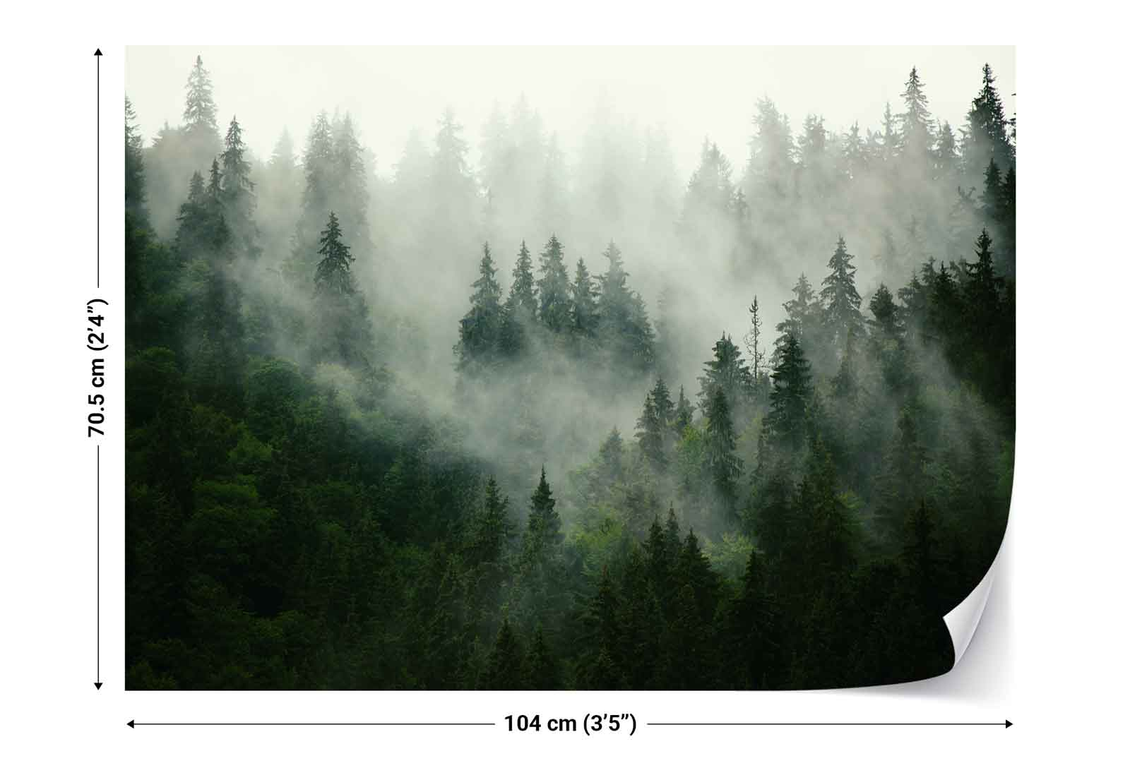 wald nebel natur vlies fototapete fw 1116 tapete ebay. Black Bedroom Furniture Sets. Home Design Ideas